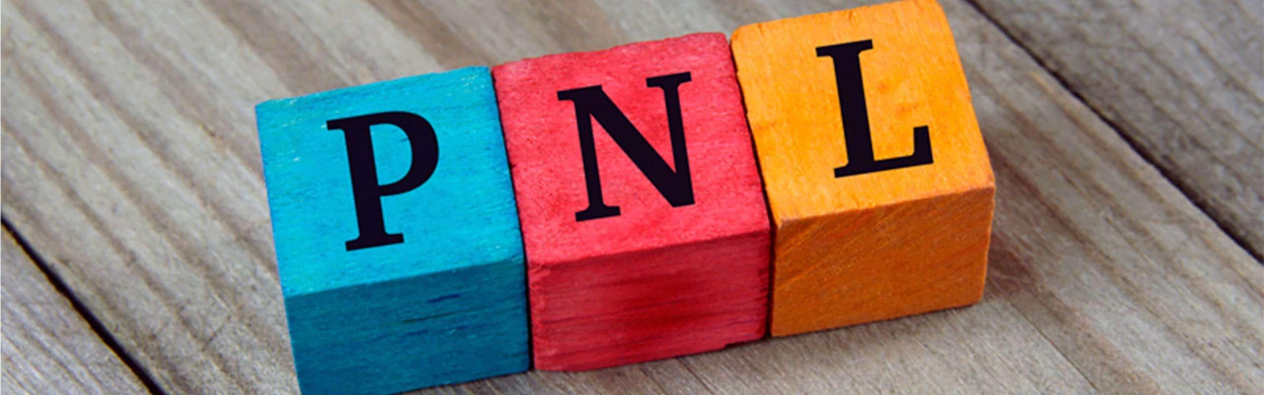 Descubre la PNL y los beneficios que aporta