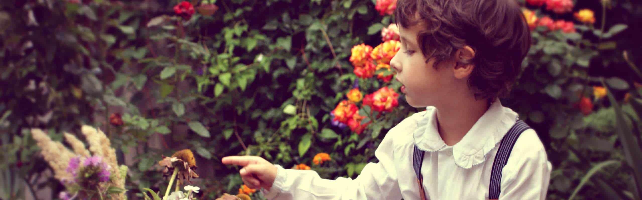 cómo incentivar la curiosidad en los niños
